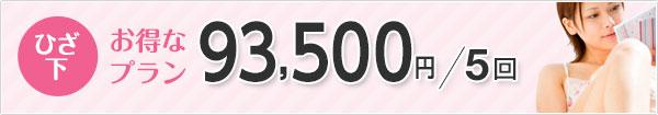 ひざ下 お得なプラン 91,800円/5回